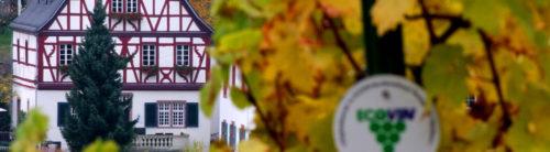 Weingut Steffens-Keß