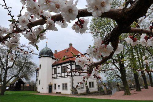 hofloessnitz2